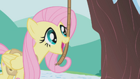 Fluttershy using bells strung on a rope S1E11