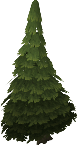 Image - Evergreen tree.png - The RuneScape Wiki