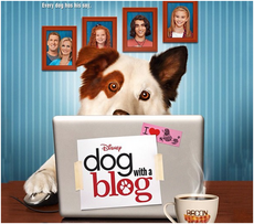 Avery B. Jealous - Dog With A Blog Wiki, the Dog with a Blog resource