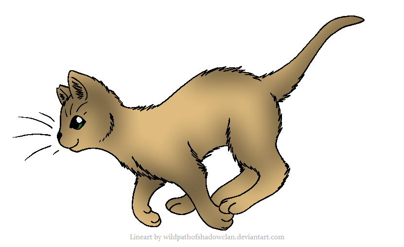 Loner character images the warrior cats role play wiki for Cat goes fishing wiki