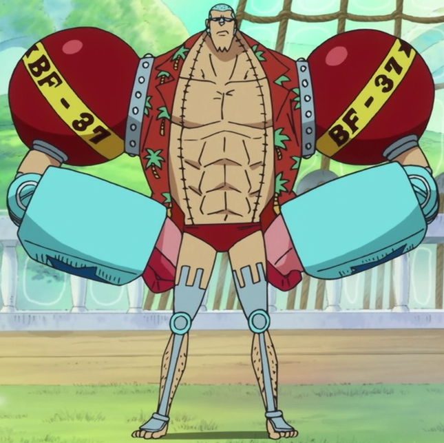 Franky_Anime_Post_Timeskip_Infobox.png