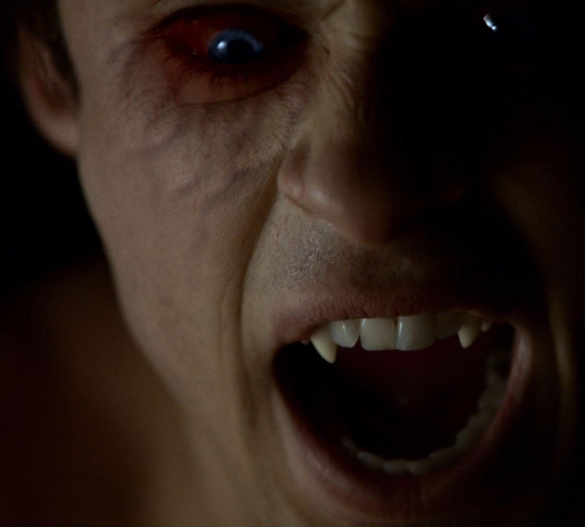 Vampiri - The Vampire Diaries & Originals Wiki